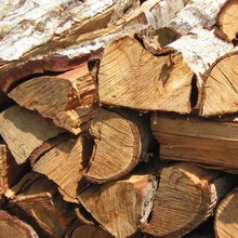 First Grade A Fire wood from France for sale