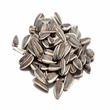 Cheap Grade A Quality Raw sunflower seeds