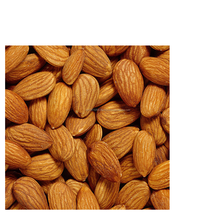 Grade A Almond Nuts / Raw Natural Almond Nuts / Organic Bitter Almonds for sale