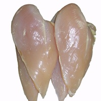 High quality fresh or frozen meat chicken