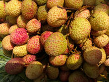 hot selling Fresh lychee / litchi / lichee / litchee / exotic fruit