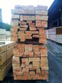 radiata pine timber kiln dried pine wood from new zealand