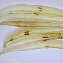 High Quality Eel Fish Maw Seafood