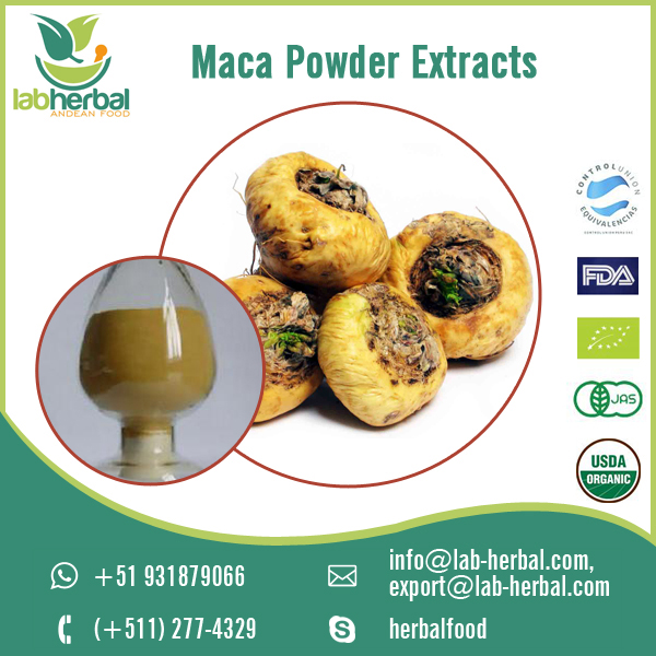 100% Best Quality Maca Powder Extracts