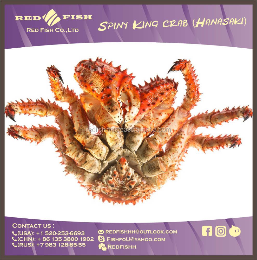 the best in the sea whole cooked spiny king crab hanasaki wholesale high quality live crab HANASAKI CRAB
