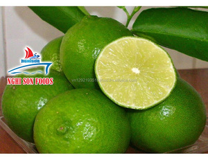 Seed Fresh Lime Exporter High Quality in Viet Nam