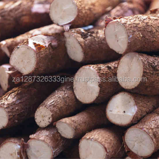 Delicious fresh cassava and cassava products for sale