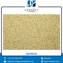 Highest Quality Quinoa Grain at Most Competitive Price