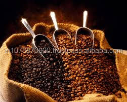 Robusta Plantation B Coffee Bean For Best Price
