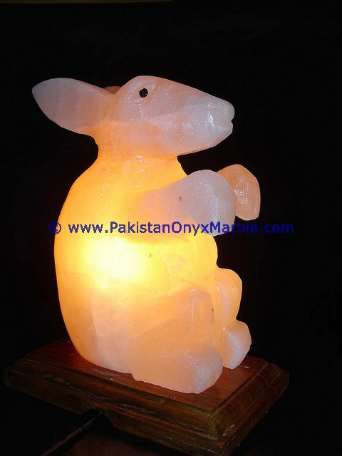 A GRADE ANIMALS CRAFTED SALT LAMPS