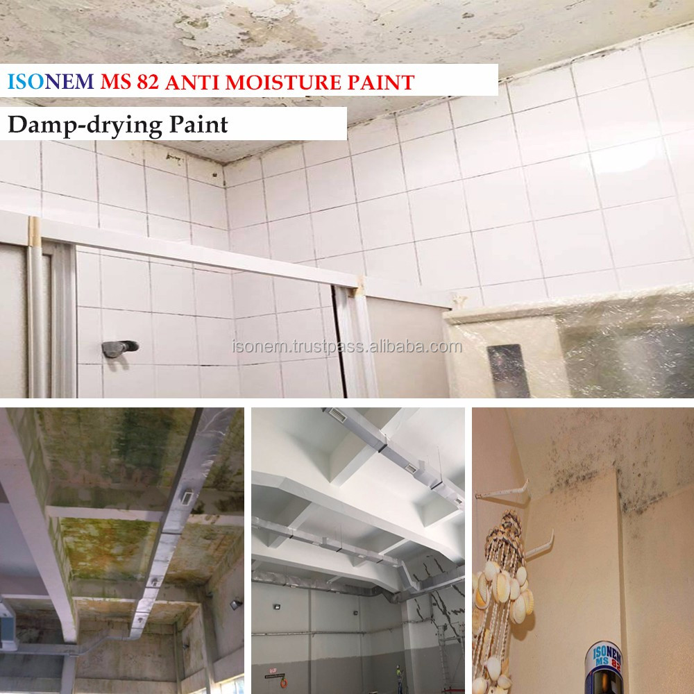 ISONEM Anti Moisture Interior Wall Paint (Isonem MS 82)