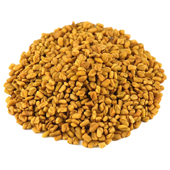 Fenugreek Seed New Harvester Crop Raw Fenugreek Seed