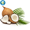 Pure and Fresh Crude 100% Organic Made from Real Coconut Fruit, Coconut Oil