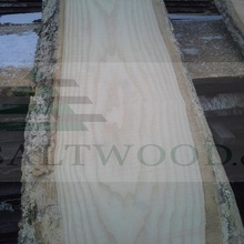Low price Unedged White Ash lumber from LATVIA