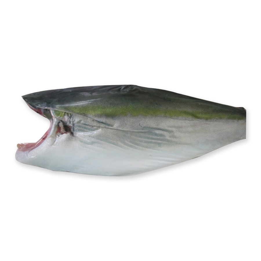 Quality Seafood Company Farmed Yellowtail Fillet Seafood Export Produced in Kagoshima
