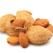 Wholesale Competetive Price Tunisian Non-Peeled Almond For Export
