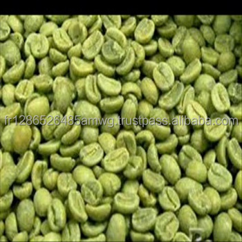 GRADE AA GREEN ROBUSTA AND ARABICA COFFEE BEANS ON SALE