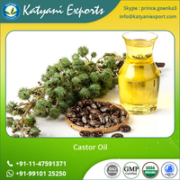 Organic Pure Indian Bulk Castor Oil for Hair Growth
