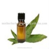 Myrtle Essential Oil For Aromatherapy / Massage / Spa.