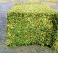 Organic Alfalfa Hay/Alfalfa Grass Hay/Alfalfa Hay Bale For Animal Feed for sale//