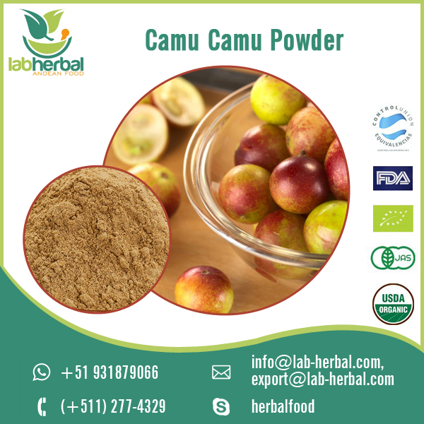 Camu Camu Powder.jpg