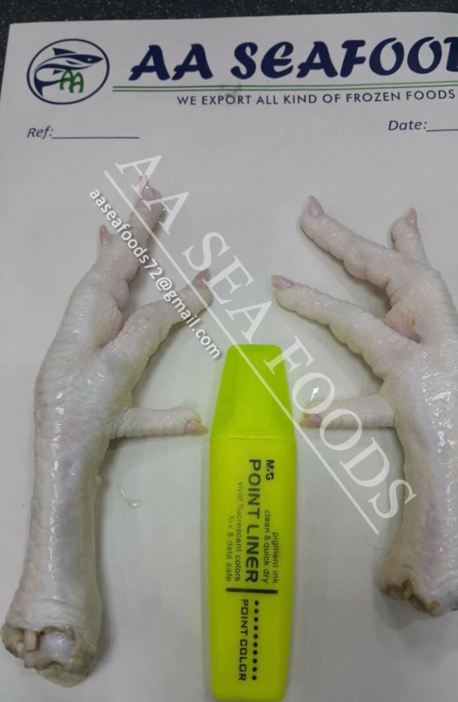 Frozen Hen/chicken feet and paws for sale in bulk quantity