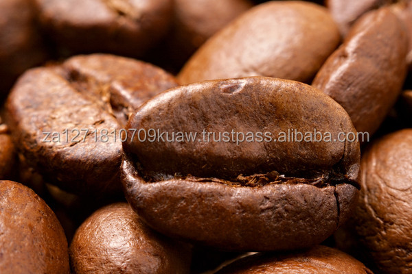 Dried arabica coffee beans/green coffee