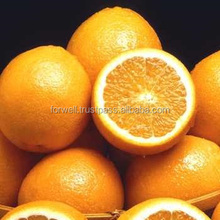 Fresh Navel, Valencia, Mandarin, Tangerin, Lemon, Quince, Limes, Citrus fruits, orange juice