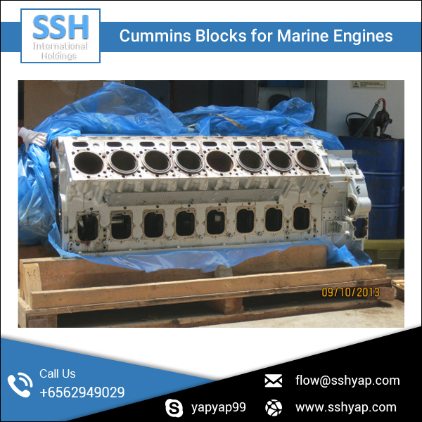 Diesel Engine Block/Cumin Engine Block at Affordable Rate