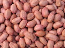 raw peanuts for sale peanut suppliers