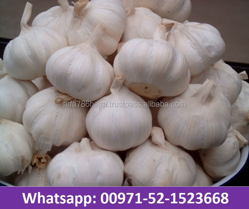 Fresh Garlic, Chinese Garlic