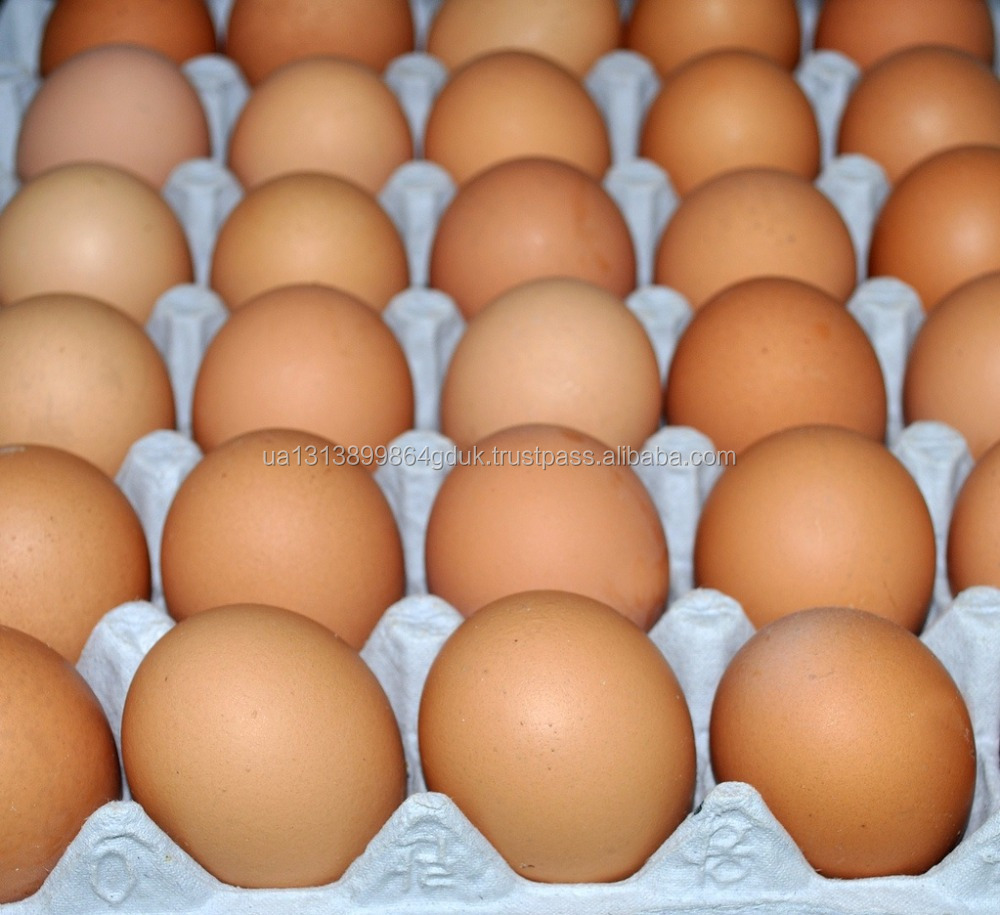 Fresh Brown/White Chicken Eggs whole sales