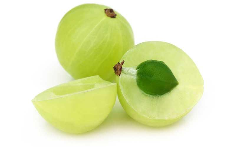 High quality certified amla fruit