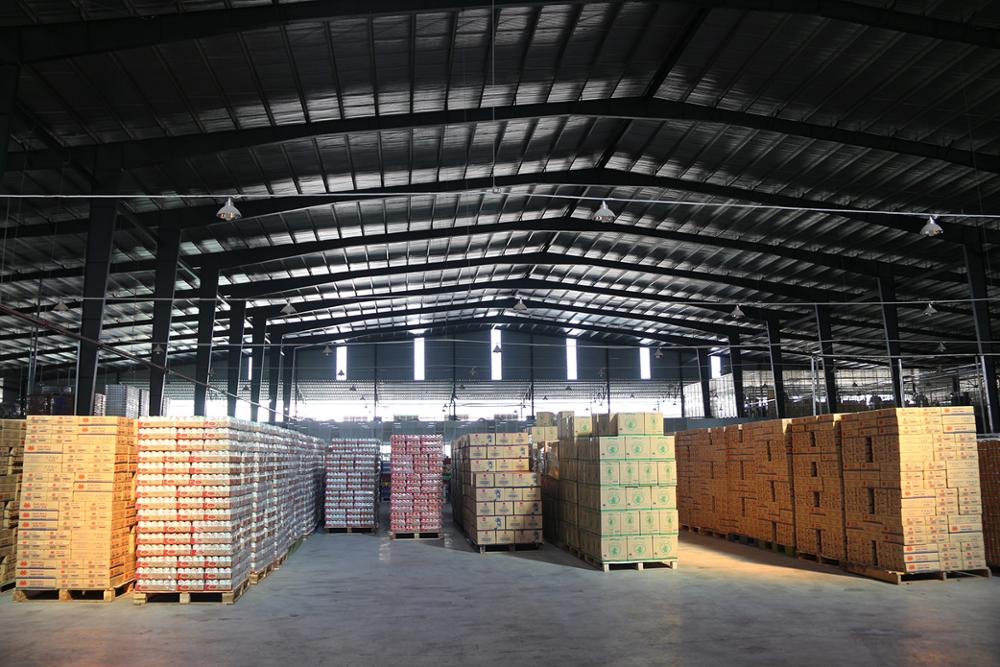 Supplying 250ml Canned Taurus Energy Drink in VietNam Manufacturer