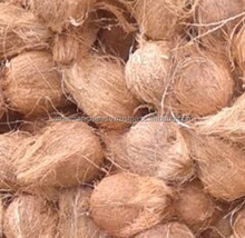 Natural fresh Indian semi husked Coconut