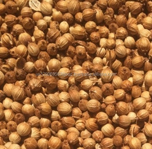 100% Natural High Quality Raw Material Spice Coriander Seed for sale