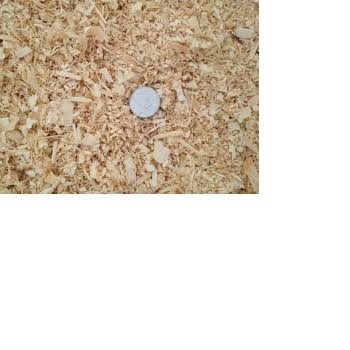 Supper 100% Quality Spruce/Pine White Wood Shavings at whole sale prices