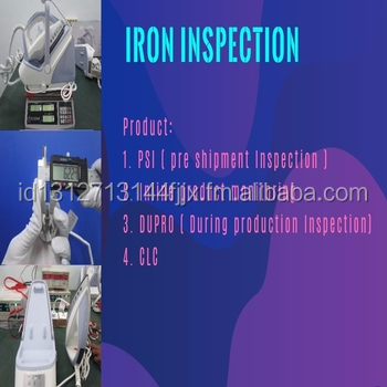 IRON / STEAM inspection service