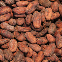 Grade A Cocoa Beans SGS Certified