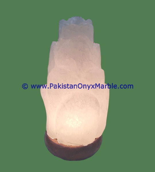HIMALAYAN CRYSTAL WHITE NATURAL ROCK SALT LAMP
