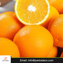 Sale price orange fresh vegetables and fruits