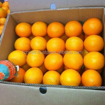 QUALIFIED TYPES OF FRESH FRUIT AND VEGETABLES : ORANGE / LEMON