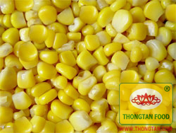 Canned Sweet Corn Kernels high quality