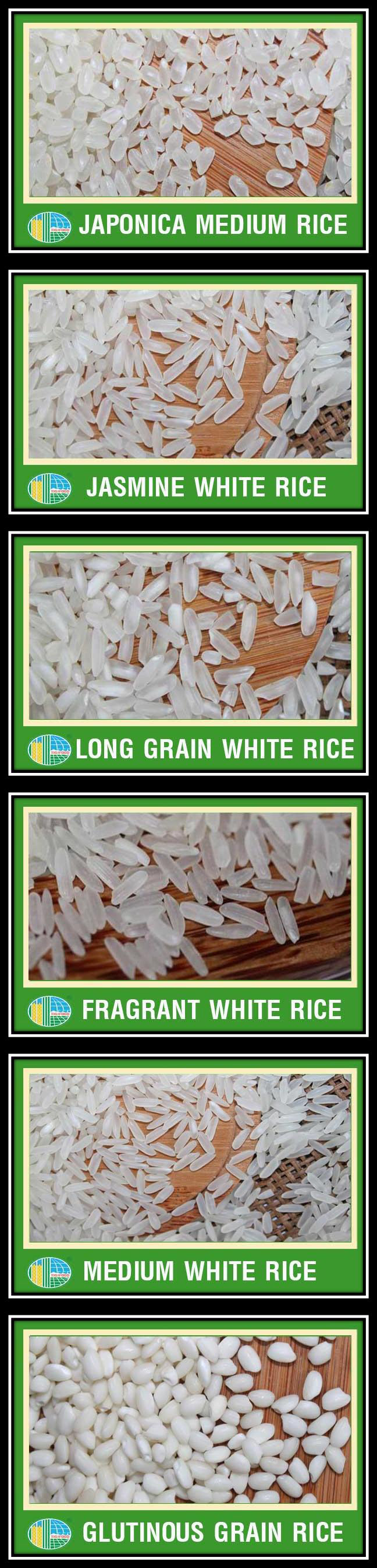 BEST SELLING- JASMINE WHITE RICE 5% BROKEN FROM VIETNAM- TOP QUALITY