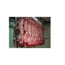 Halal Frozen Boneless Beef/Buffalo Meat/ Salted and Frozen Beef Omasum