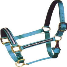 Draft horse size nylon halters bLUE & white, snap on cheek/ veterinary instruments and equipment