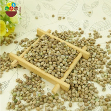 Chinese factory supplier direct agricultural hemp seeds wholesale