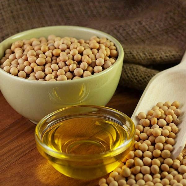 high quality Soyabean for sale competitive prices