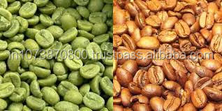 Indian Robusta Coffee beans Raw coffee beans with whole sale price
