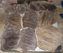 Best Quality Preserved Frozen beef Omasum/ beef stomach/ cow stomach